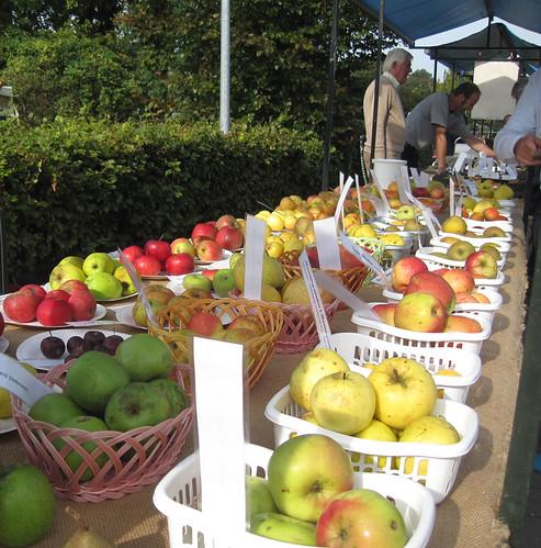 appeldag-appels