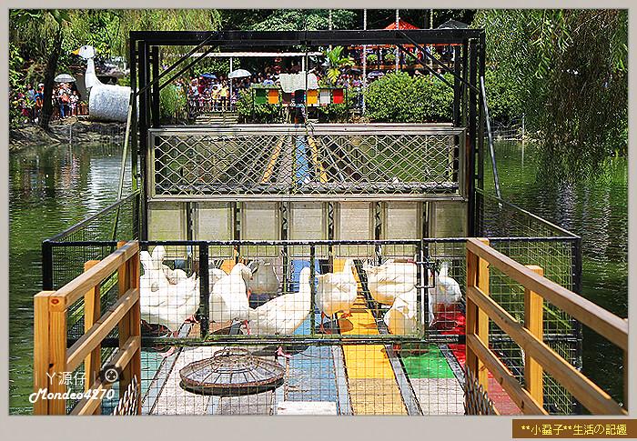 台南小吃綠盈牧場37