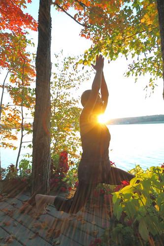 trees fall yoga mactaquac newbrunswicksunrise saintjohnrivercanada