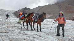 Do transportu plecaków można wynajać konia za 250 lari (ok. 500 zł).