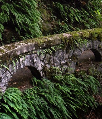 Shepperd's Dell Stone walkway