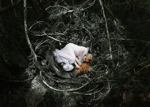 INDPNDT - shelter