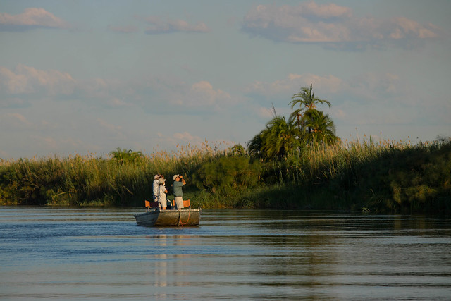 Birding on the Okavango River