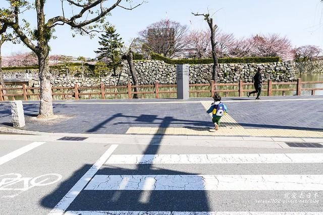 0331D6姬路、神戶_49