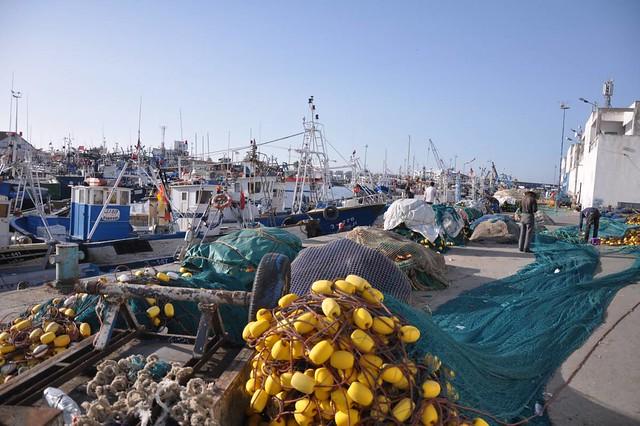 Illegal driftnets in Morocco / Redes de deriva ilegales en Marruecos