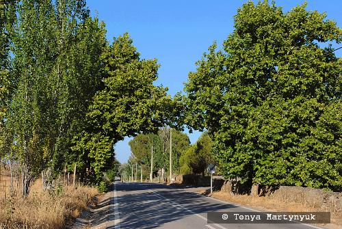 79 - провинция Португалии - маленькие города, посёлки, деревушки округа Каштелу Бранку