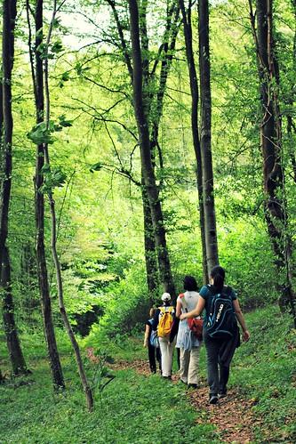 Hiking close to Useldange, Luxembourg