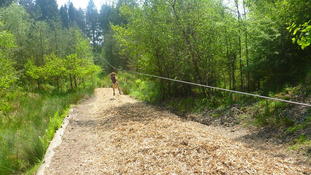 goape, go ape, forest of dean, mallards pike lake