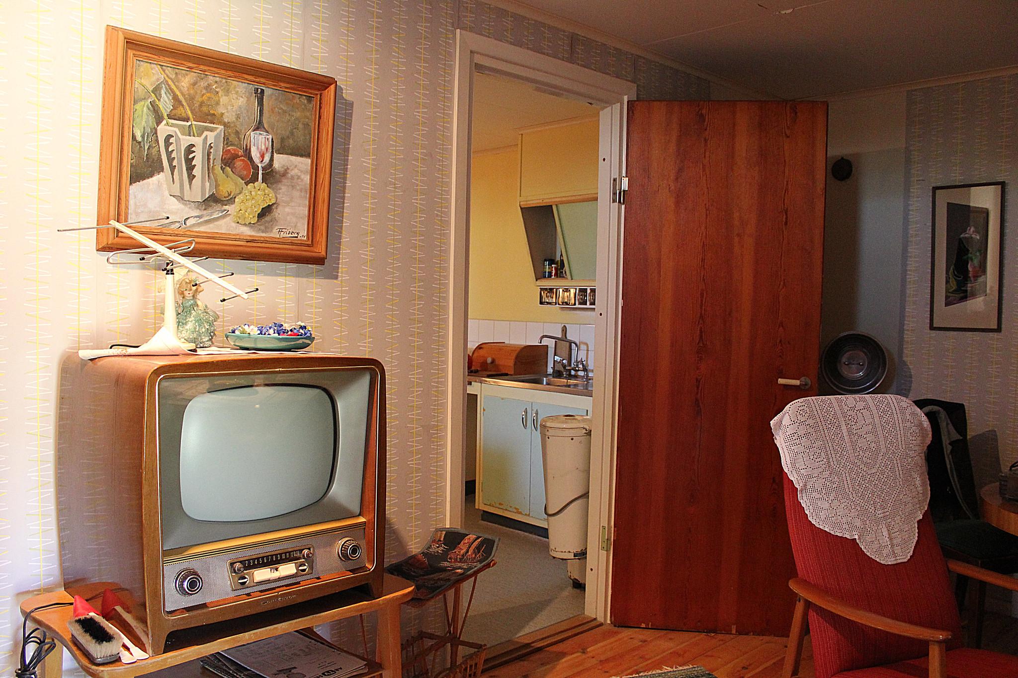 Television room Sweden 50s