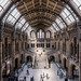 Natural History Museum by chmop