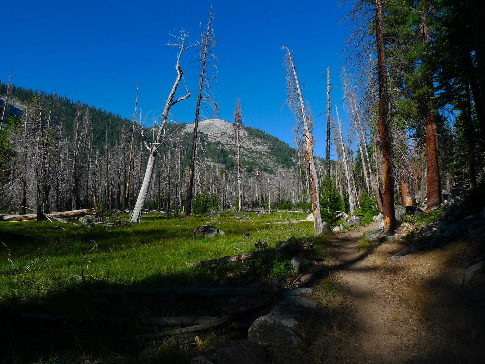 Much of Little Yosemite Valley is dumpy, dead, burned, and generally uninteresting.