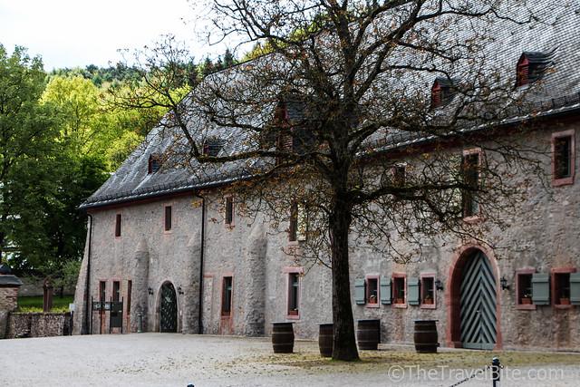 Rheingau Wine Region Germany-50