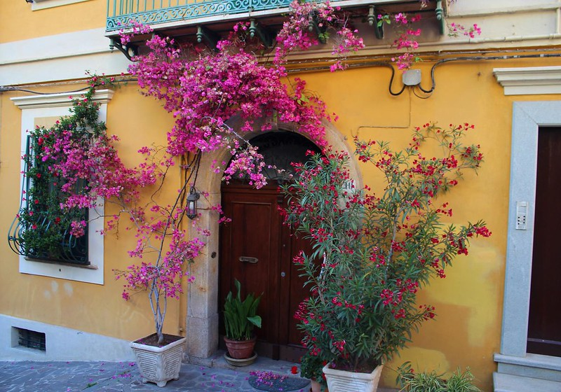 Blumen-Eingang