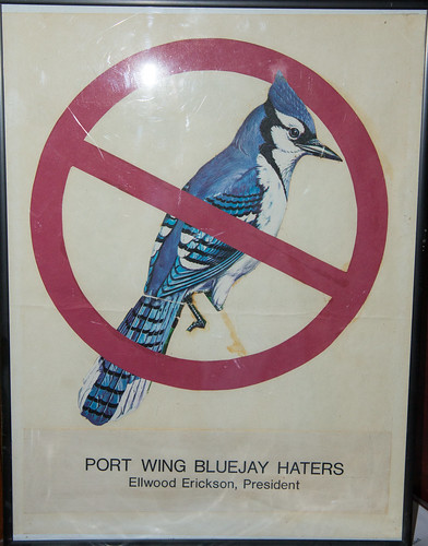 Port Wing Blue Jay Haters
