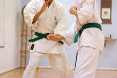 individual sports(1.0), contact sport(1.0), sports(1.0), tang soo do(1.0), combat sport(1.0), martial arts(1.0), karate(1.0), japanese martial arts(1.0), shorinji kempo(1.0),