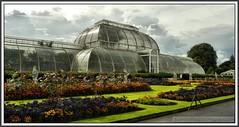 P1260295 Kew Gardens Palm House..
