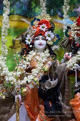 Balarama_Jayanti_10-08-14_9683