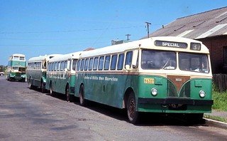 John J Hills Wollongong AEC Regal III 6351 (ex MTT Adelaide 172) and Leyland OPD1-1 6314 (ex DRT&T 1835) outside the depot in Glebe Street, Wollongong, N.S.W. Australia.
