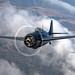 A2A : Grumman FM-2 Wildcat by Visual Approach
