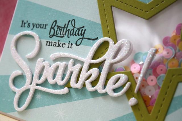 PTI~Sparkle & Shine