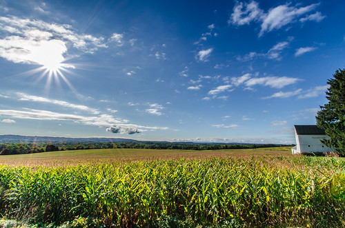 morning sky sun day farm sunny fair clear rays pwpartlycloudy