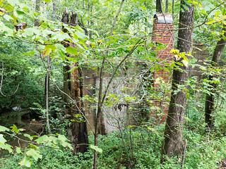 Trammell mill