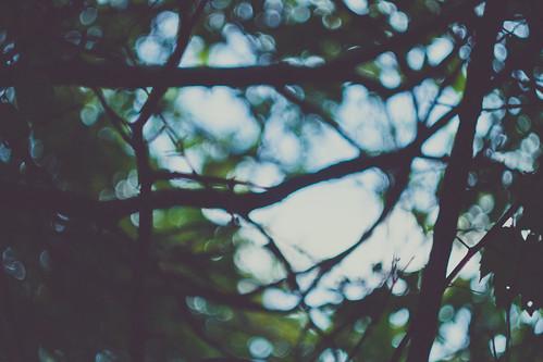 6/365 - Even The Darkest Moments