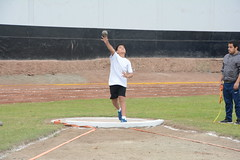 throwing, athletics, track and field athletics, sport venue, sports, shot put, person, physical exercise, athlete,