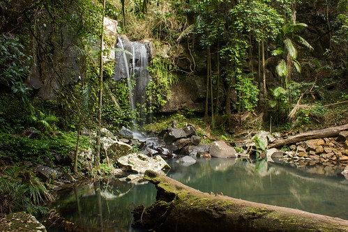 waterfall australia tamborine curtisfalls