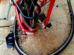 Bicycle Wheel Baltimore