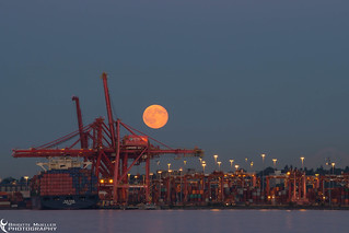 Harbour Super Moon
