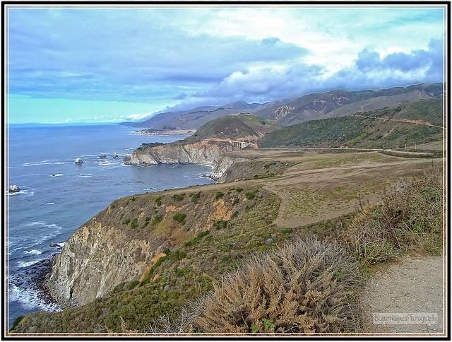 california (263) copy