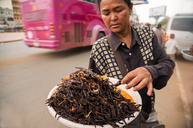 Fried spiders in Skuon, Cambodia.