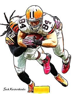 Cleveland Browns Jordan Cameron - Cincinnati Bengals Reggie Nelson