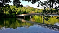 Teddy Roosevelt Island bridge, May 25, 2014
