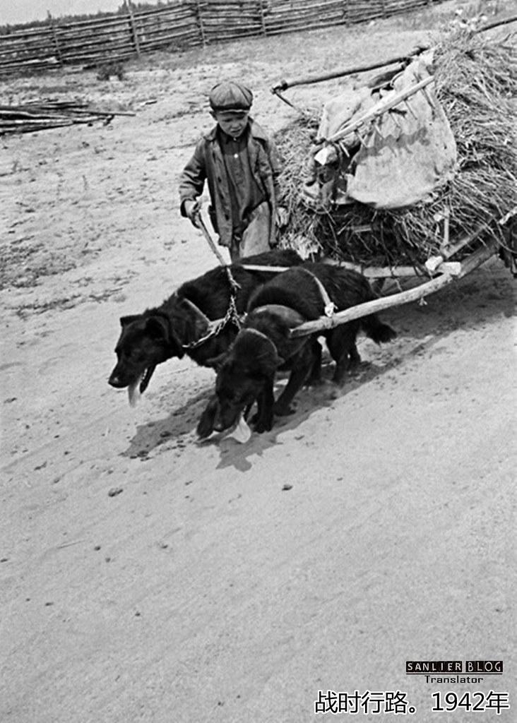 伟大卫国战争中的儿童71