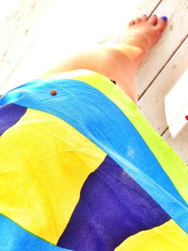 ladybug landing strip 2014