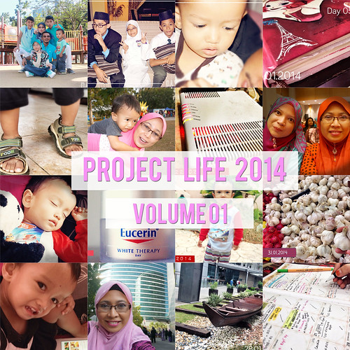 Project-Life Cover Vol1