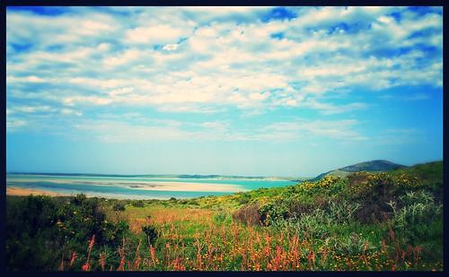 West Coast National Park - added filter