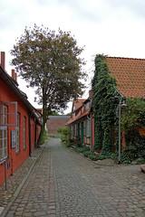 Stralsund - Kloster »Zum Heiligen Geist« (3)
