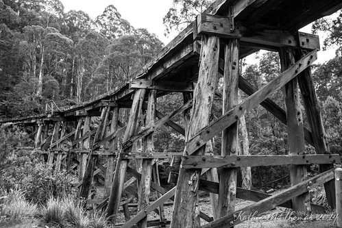 A study of the Puffing Billy Trestle Bridge