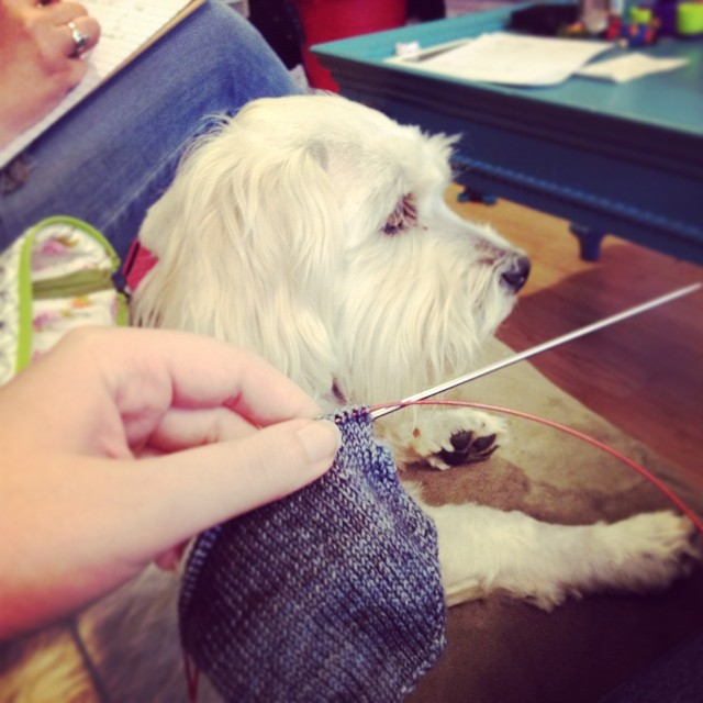 Knitting socks with Teddy (& @mistydot). We're working on something great. Announcement soon!