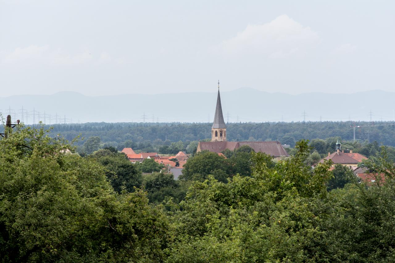 Stettfeld