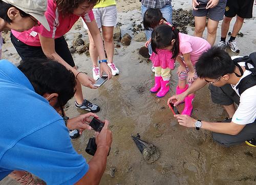 Public walk at Sisters Island Marine Park (14 Aug 2014)