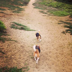 A mid-day trip to Ft. Funston with the boys... Yet another vacation task, I don't know how much more I can take! ;-)