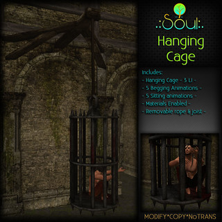2014 Hanging Cage