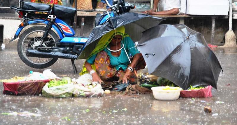 484 Ultimos dias en Pushkar  (9)