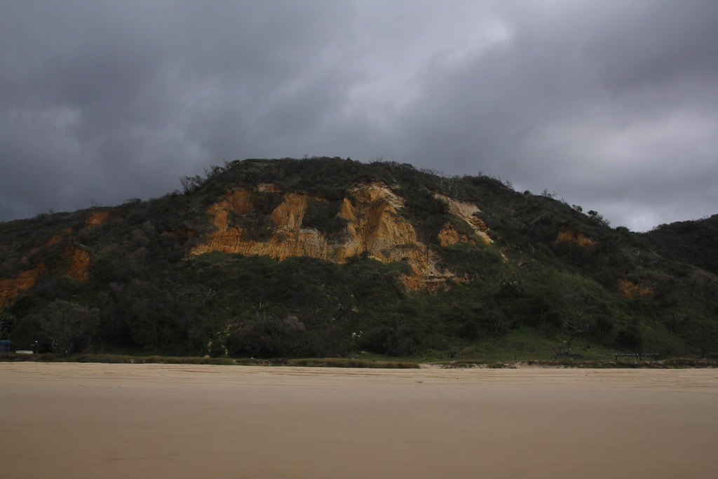 fraser island. kingfisher resort, 75 mile beach, stonetool sandblow, red canyon, rainbow cliffs, maheno shipwreck, indian head, champagne pools, eurong resort, dingo, dingos