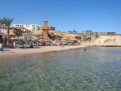Sharks Bay beach