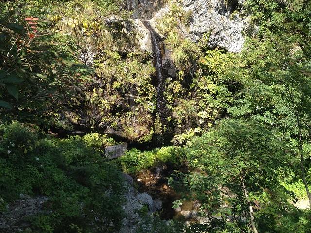 夜叉ヶ池 登山道 幽幻の滝